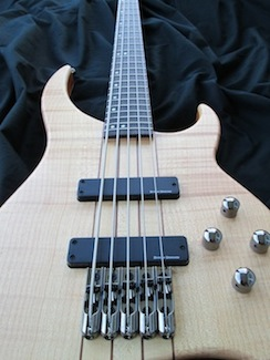 the samick greg bennett delta bass db5-5 5 string electric bass, a bass  made with excellent craftsmanship, instant playability, at a cost that can  be